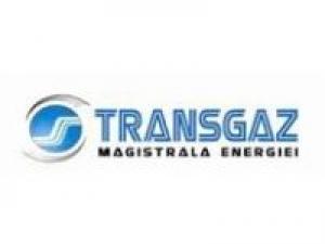 România renunţă la gazele ruseşti pentru că nu mai are pe ce să le consume